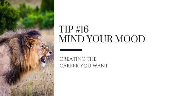 Creating the Career You Want – Tip #16